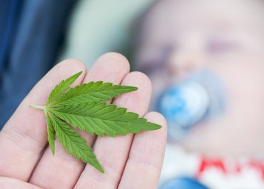 Why CannaMoms are Integral to Parenting
